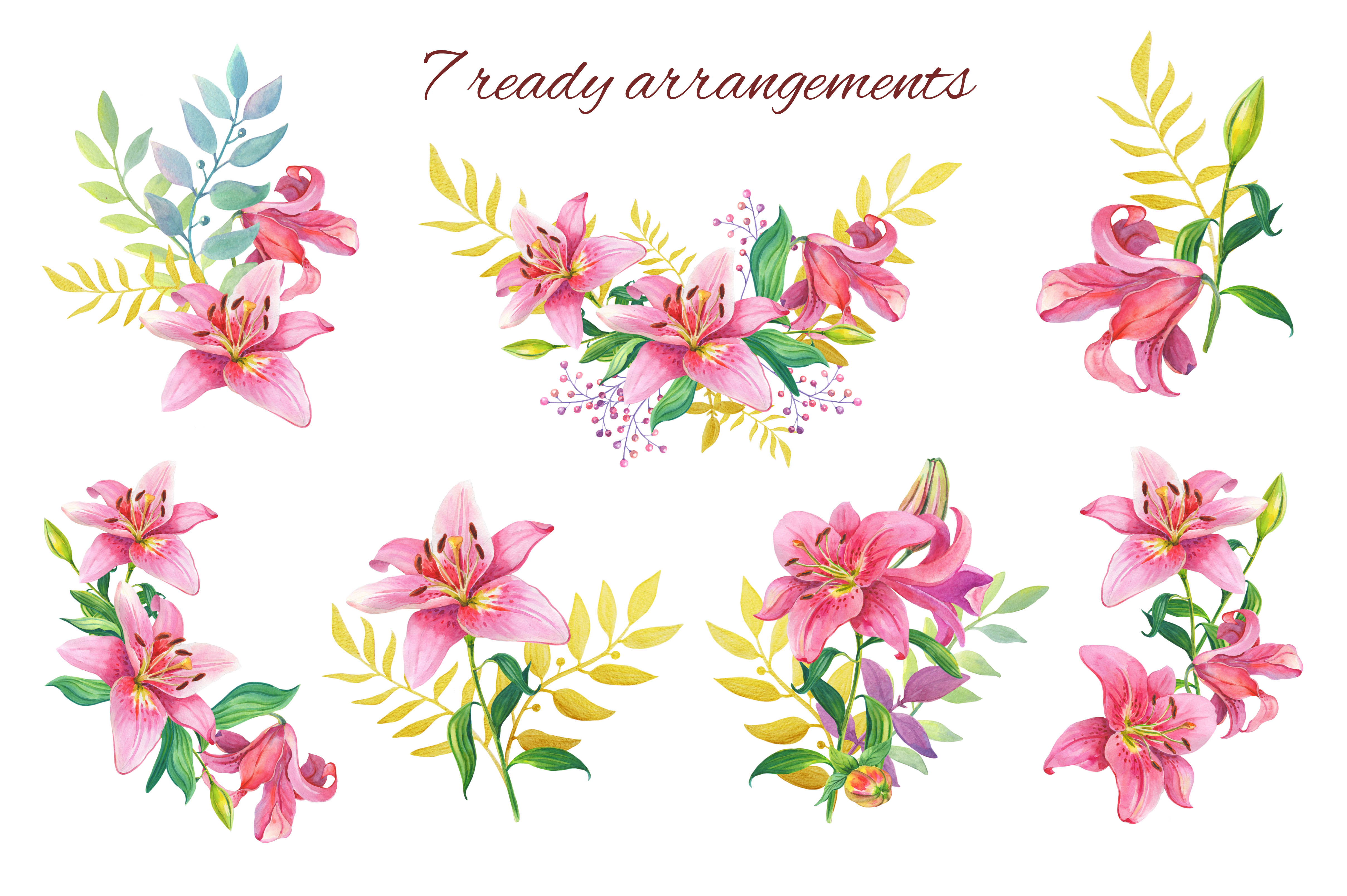 Pink Lilies.Watercolor clipart. example image 5