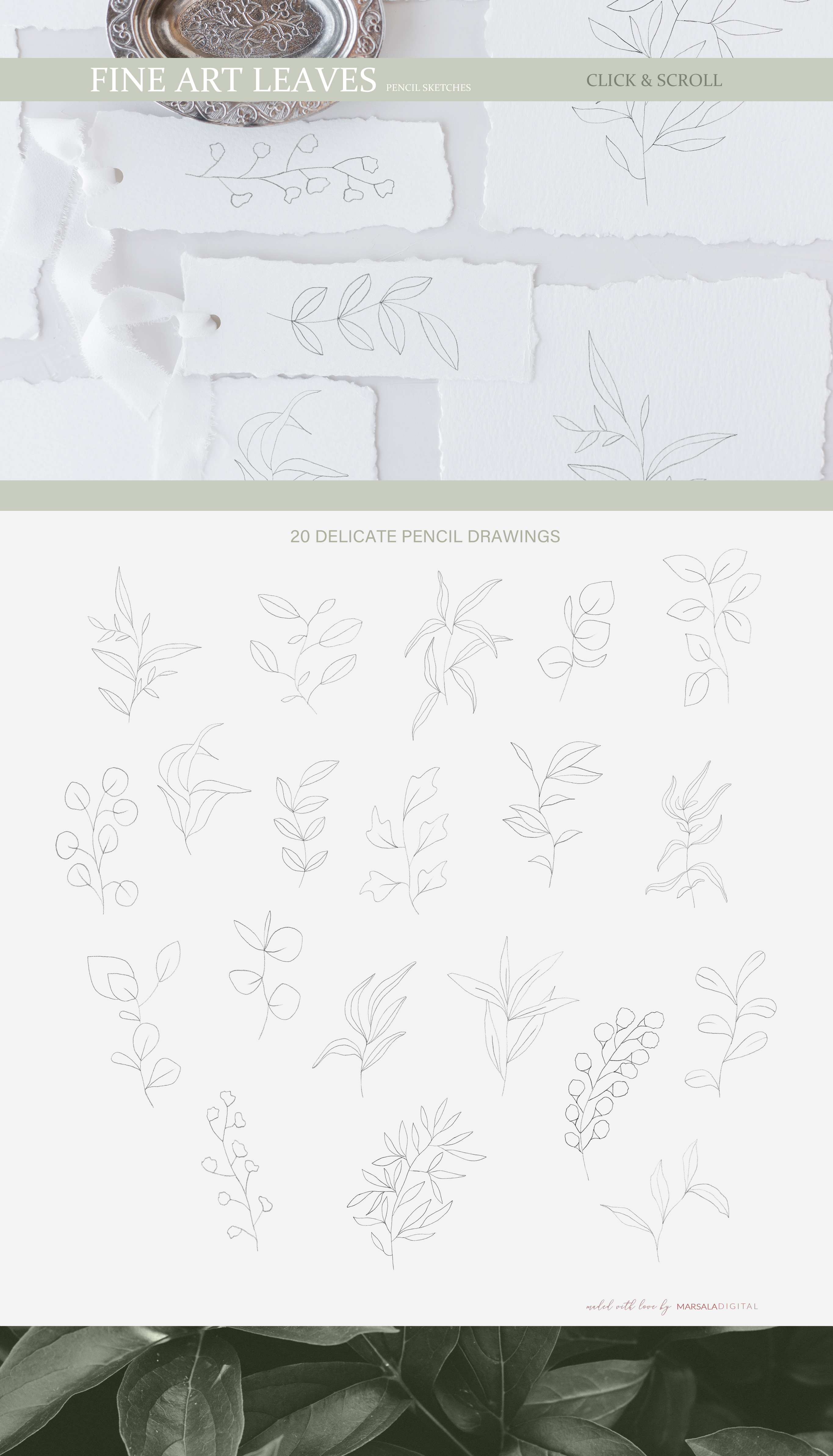 Fine Art Leaves - Pencil Sketches example image 2