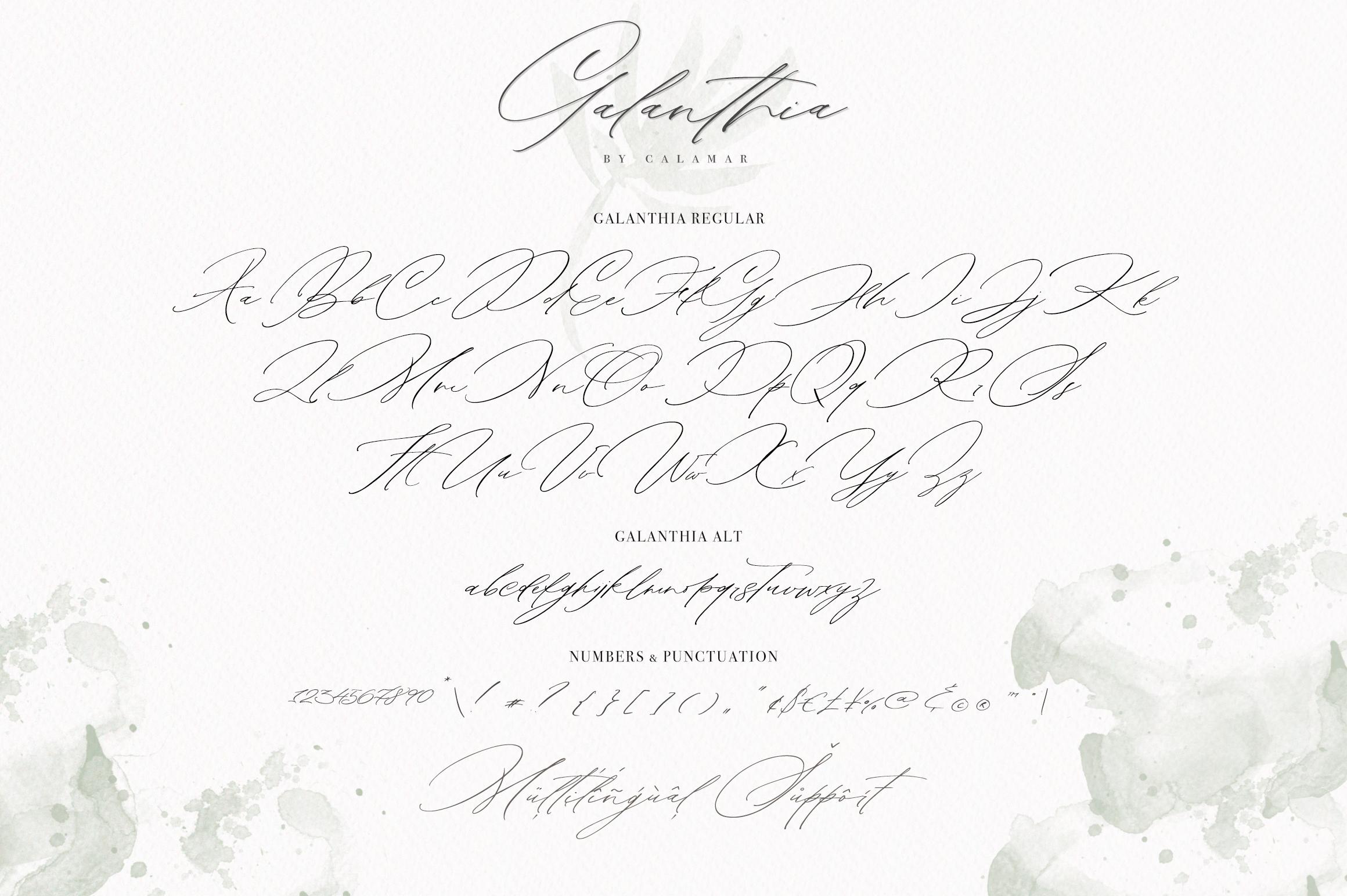Galanthia Script example image 9
