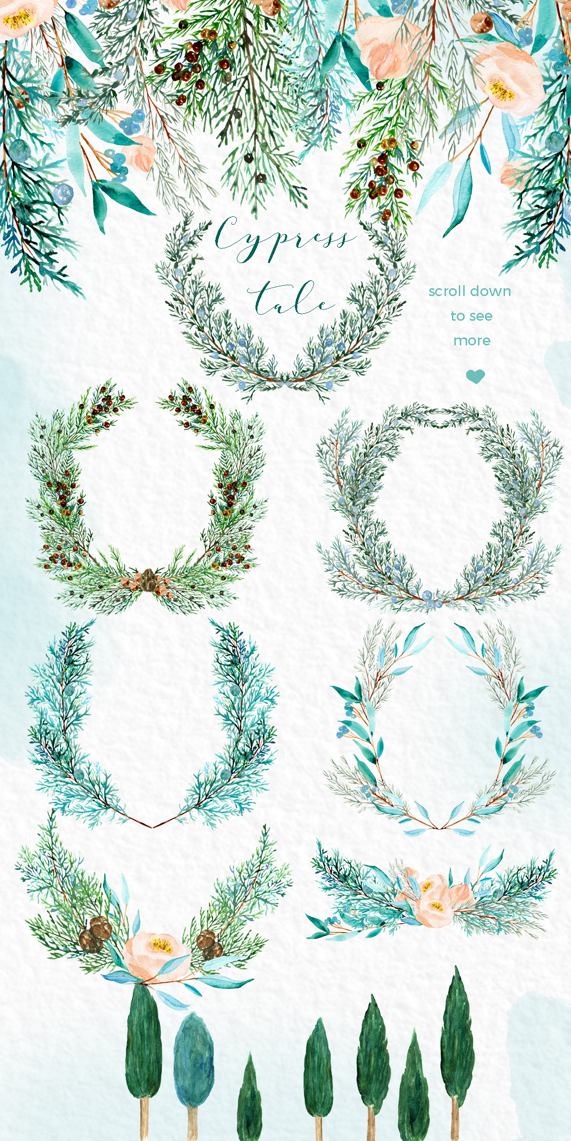 Cypress tale. Watercolor clipart. Cypress christmas branches example image 12