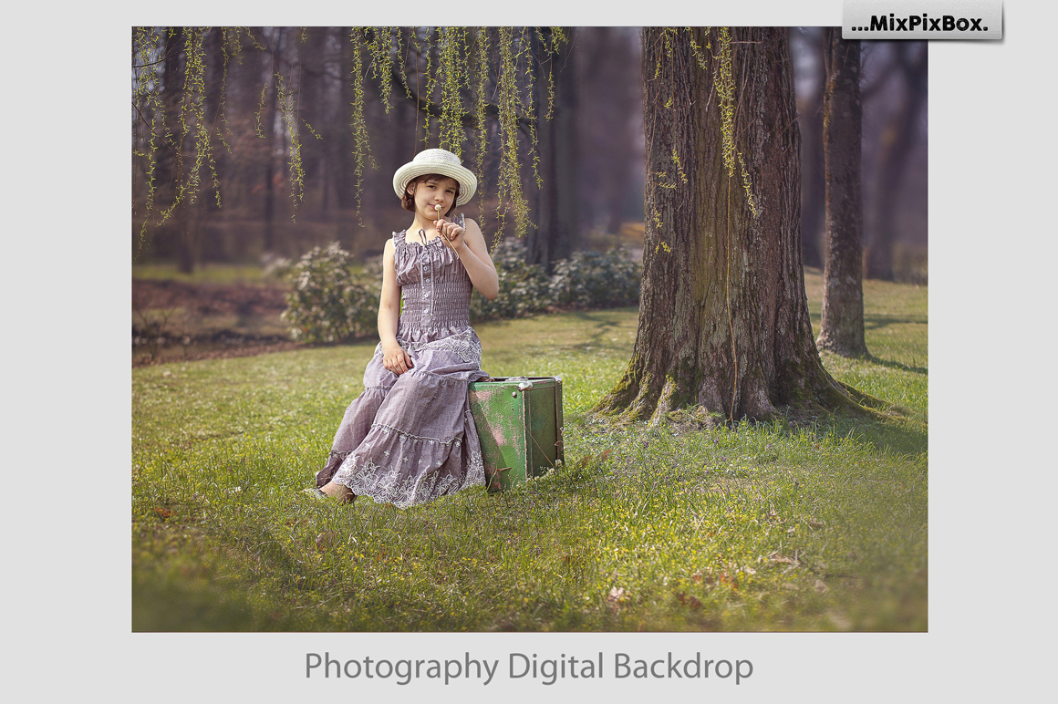 Summer backdrops example image 4
