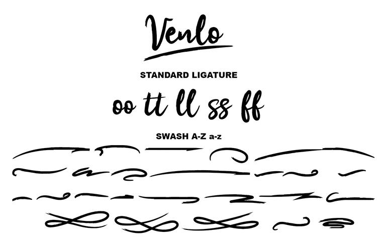 Venlo Brush Font example image 8