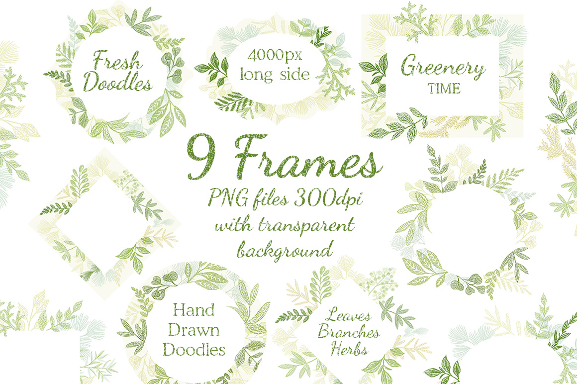 Leaves Branches & Herbs frames. Fresh Doodle collection example image 2