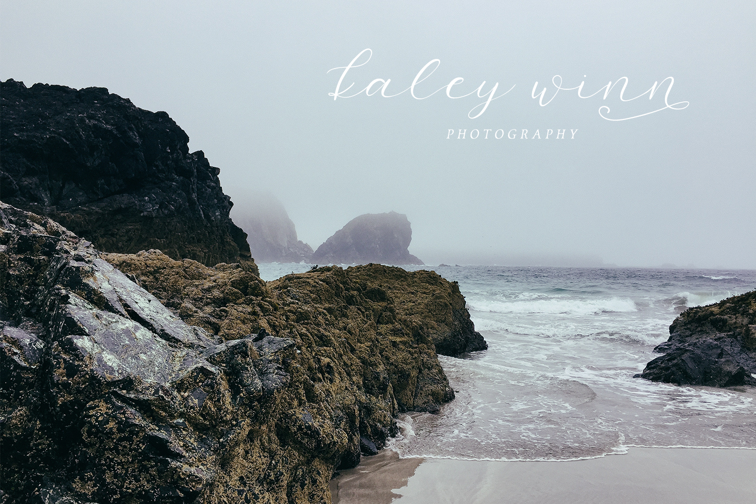 Salt and Sea Calligraphy Font example image 5
