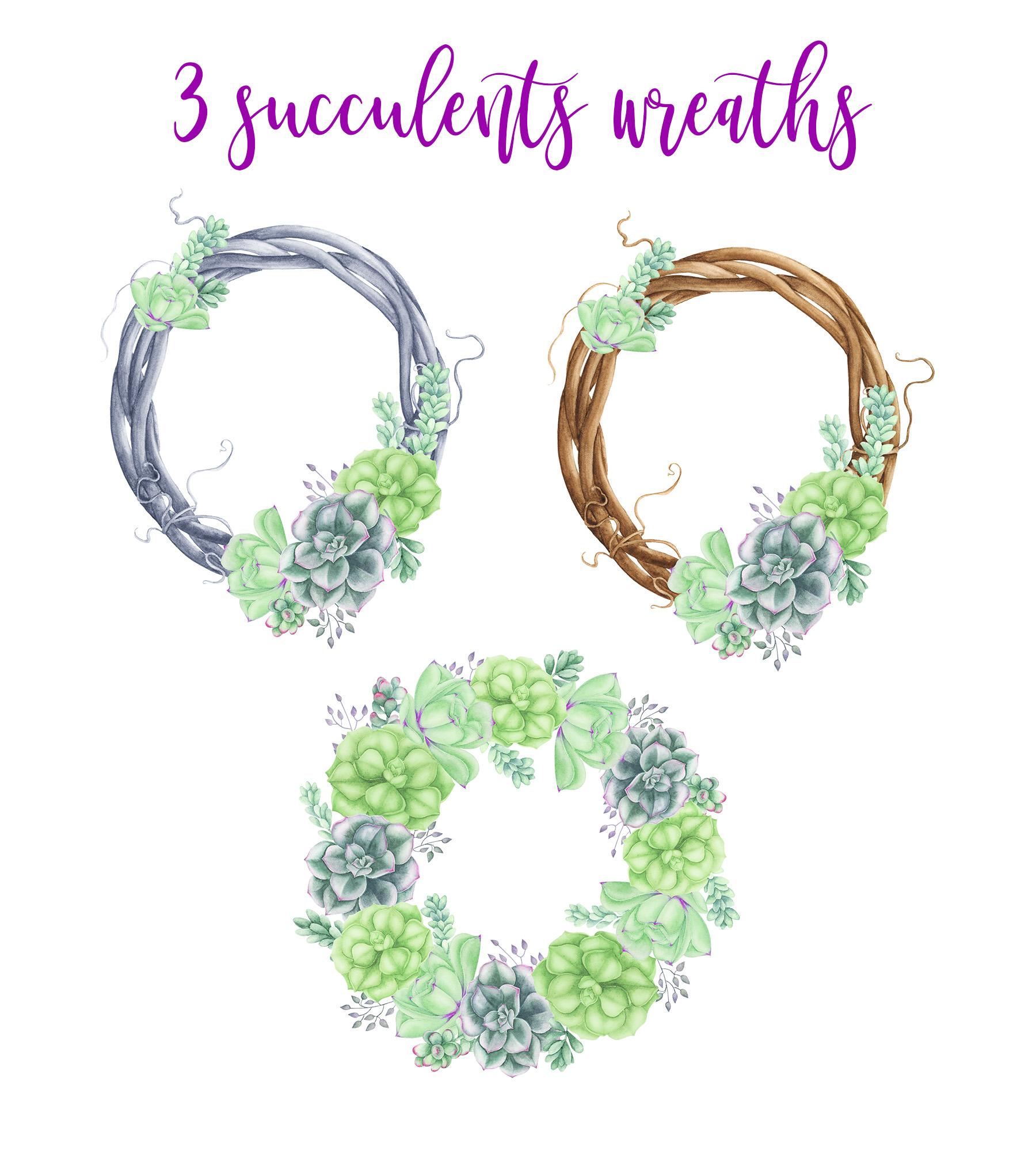 Succulents Bundle example image 5