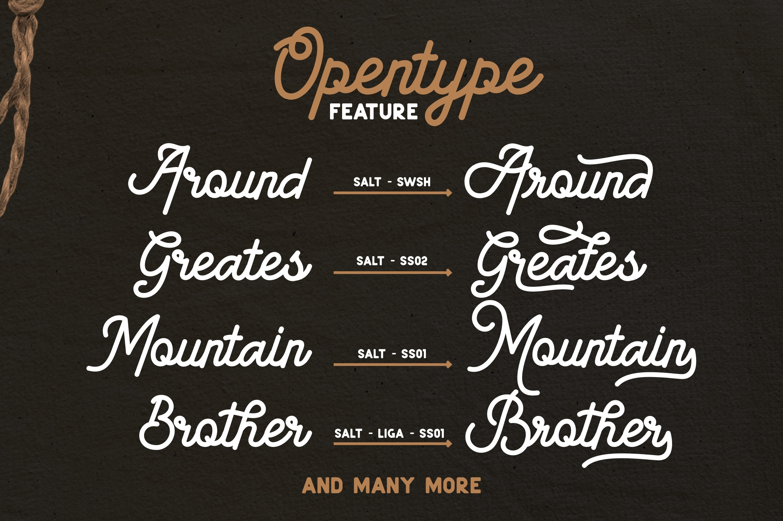 American Lemon Font Duo example image 3