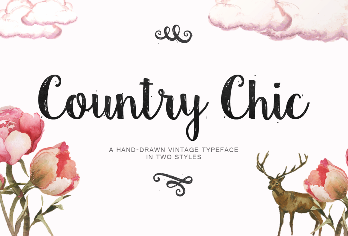 Country Chic Script example image 1