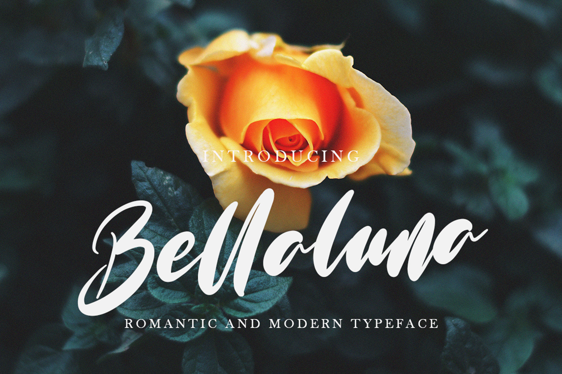 Bellaluna example image 1