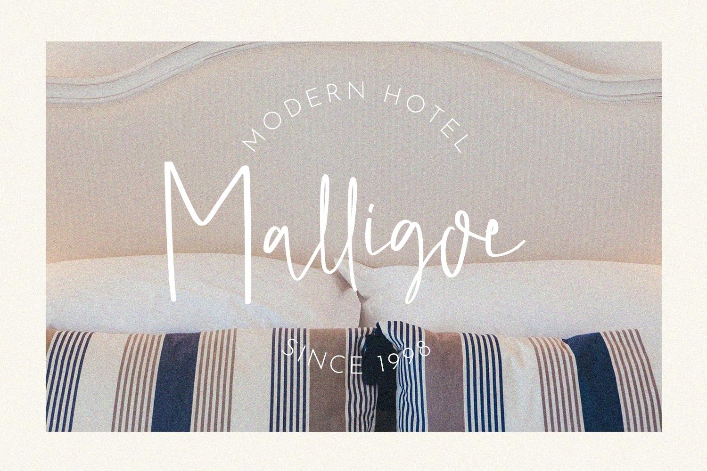 Malligoe - The Script Branding Font example image 6