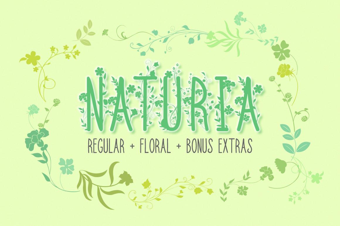 Naturia Floral Font & Bonus Extras example image 1