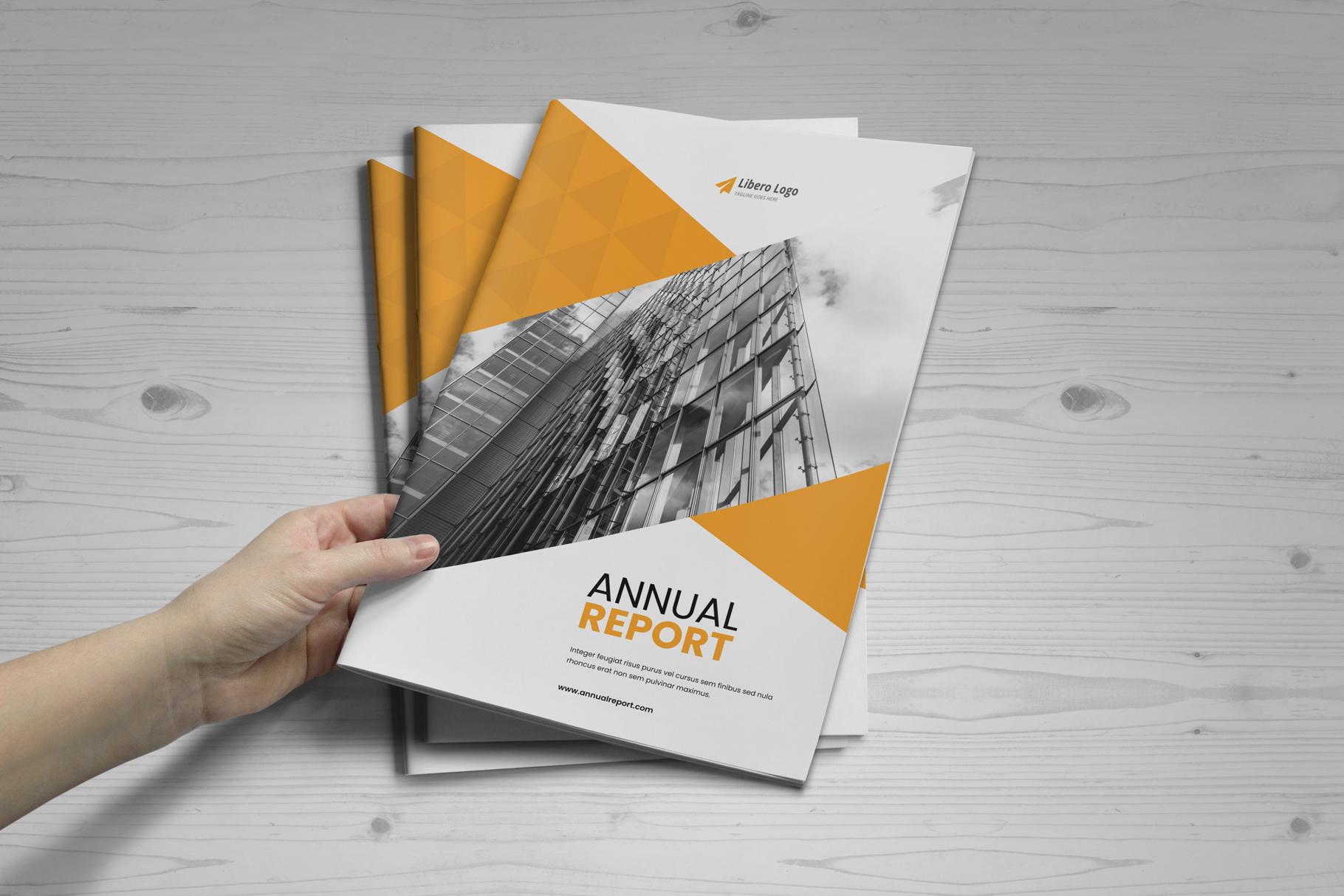 Annual Report Design v6 example image 20