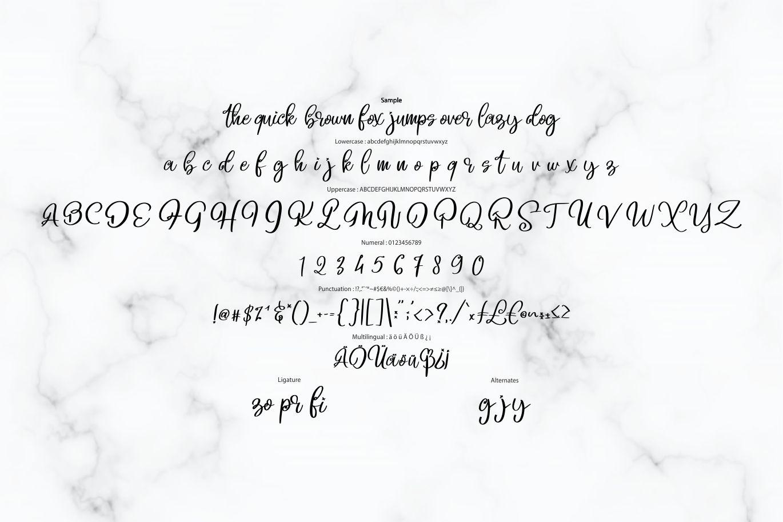 Beligo Cary   Curly Script Font example image 6
