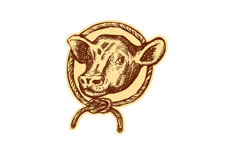 Cow Bull Head Rope Circle Etching example image 1