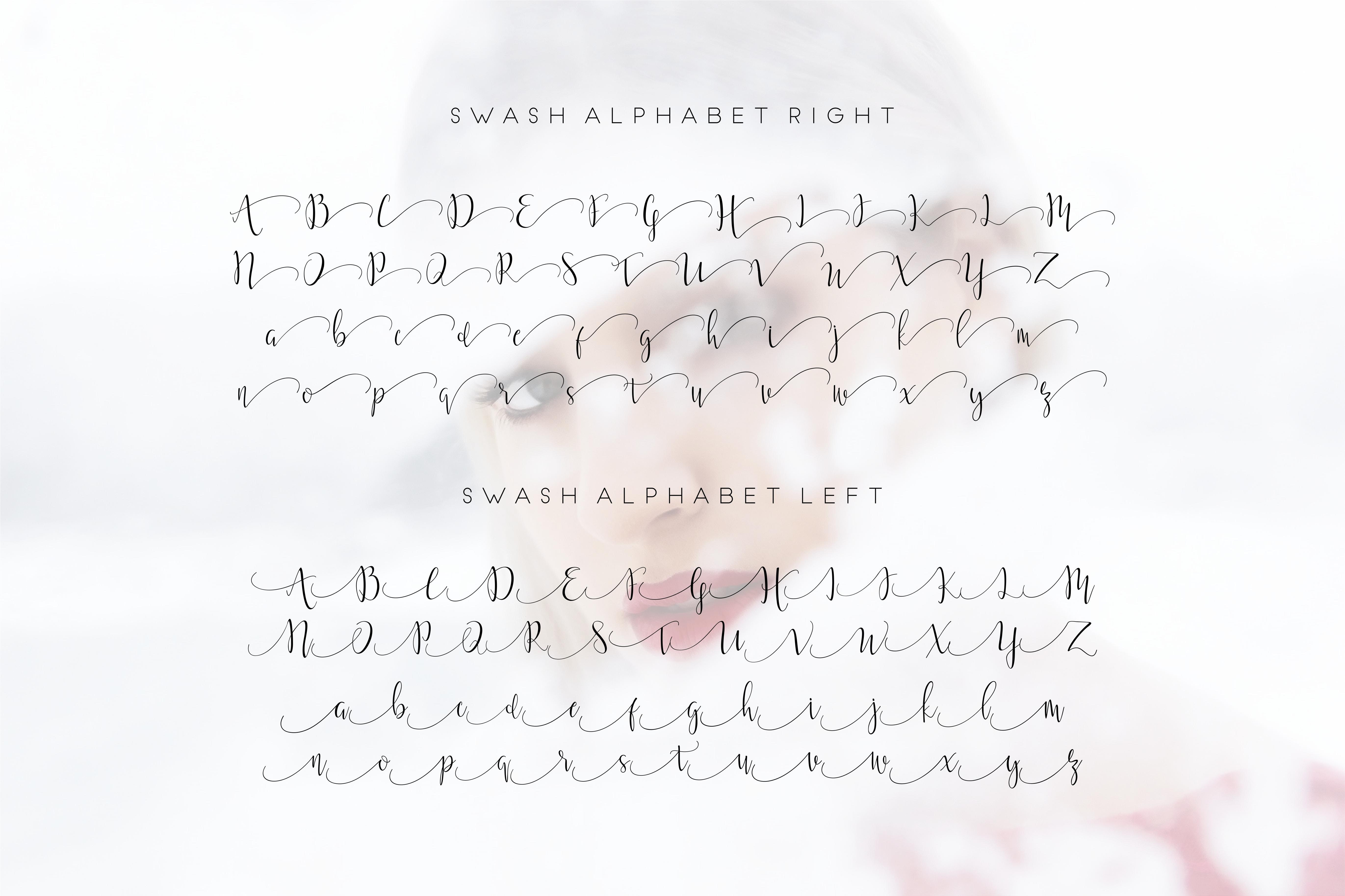 Moonlight Script Font example image 5