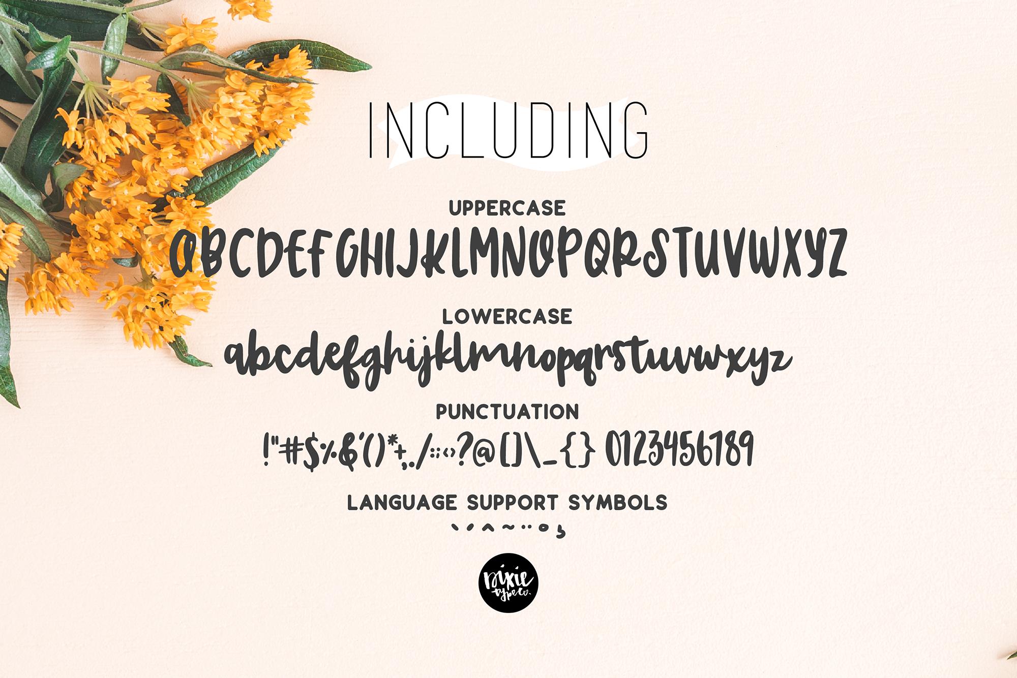 CHARLOTTE BRUSH Script .OTF Font example image 3