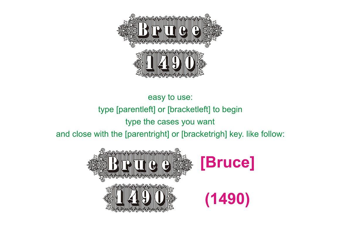 Bruce 1490 example image 2