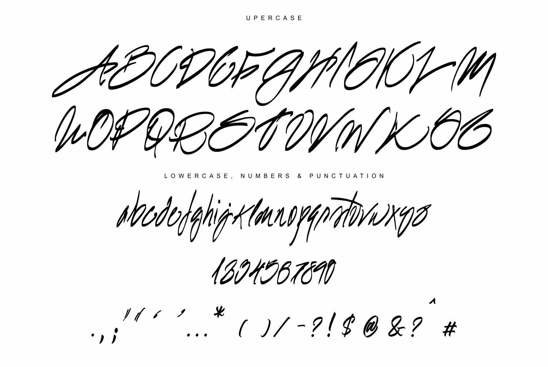 Sharpie Script example image 2