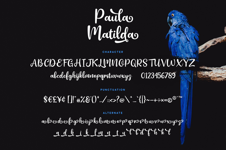 Paula Matilda Font example image 7