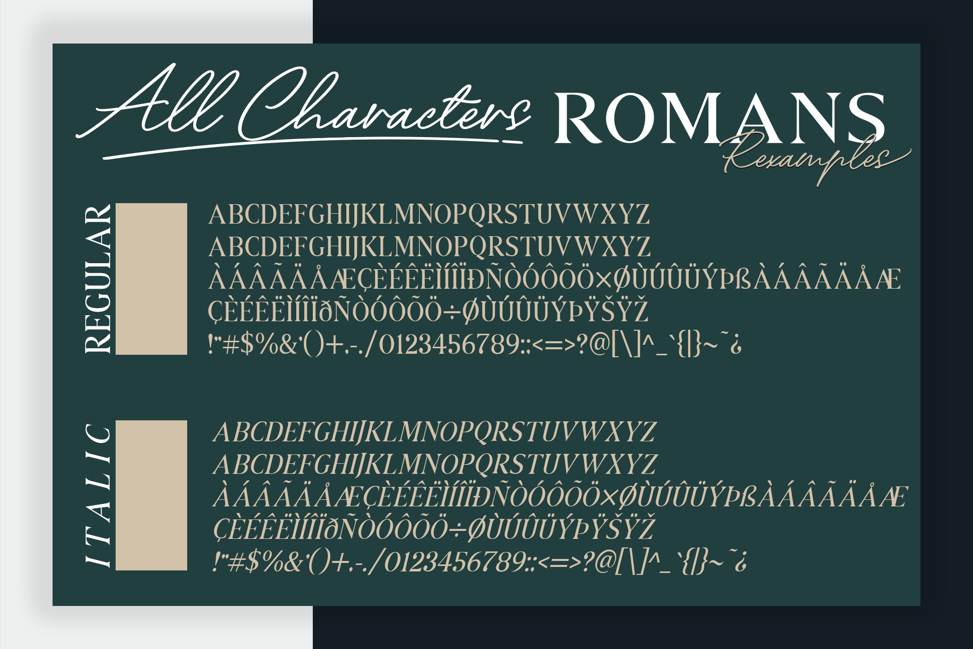 ROMANS Rexamples Font Duo example image 9