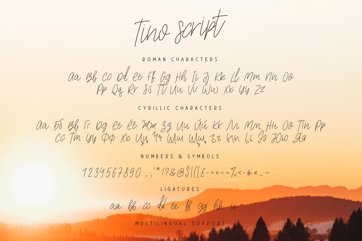 Tino Script example image 5