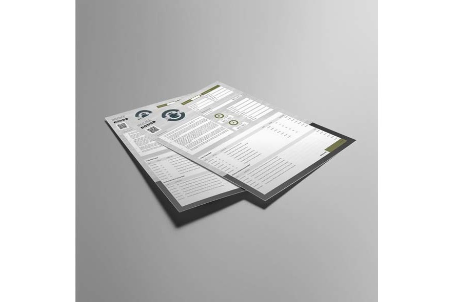 Company Invoice A4 Portrait Template example image 2