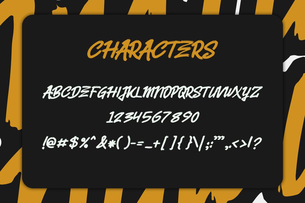 Belvana Brush Font example image 3