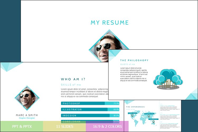 Resume Presentation Templates example image 1
