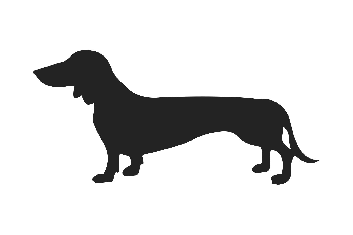 dachshund svg files for cricut example image 2