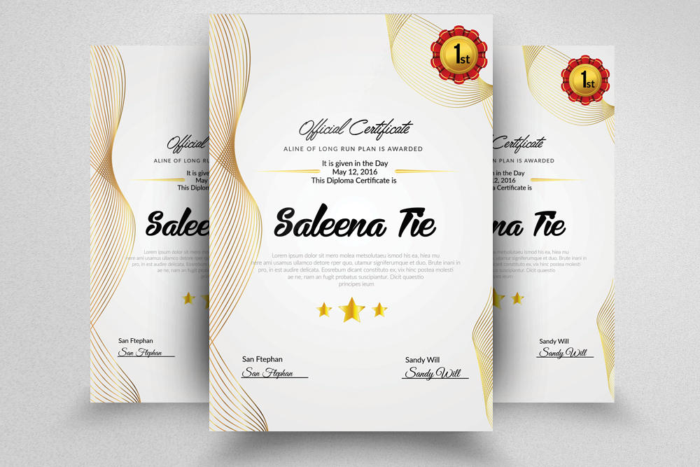 Vertical Certificate Templates example image 2