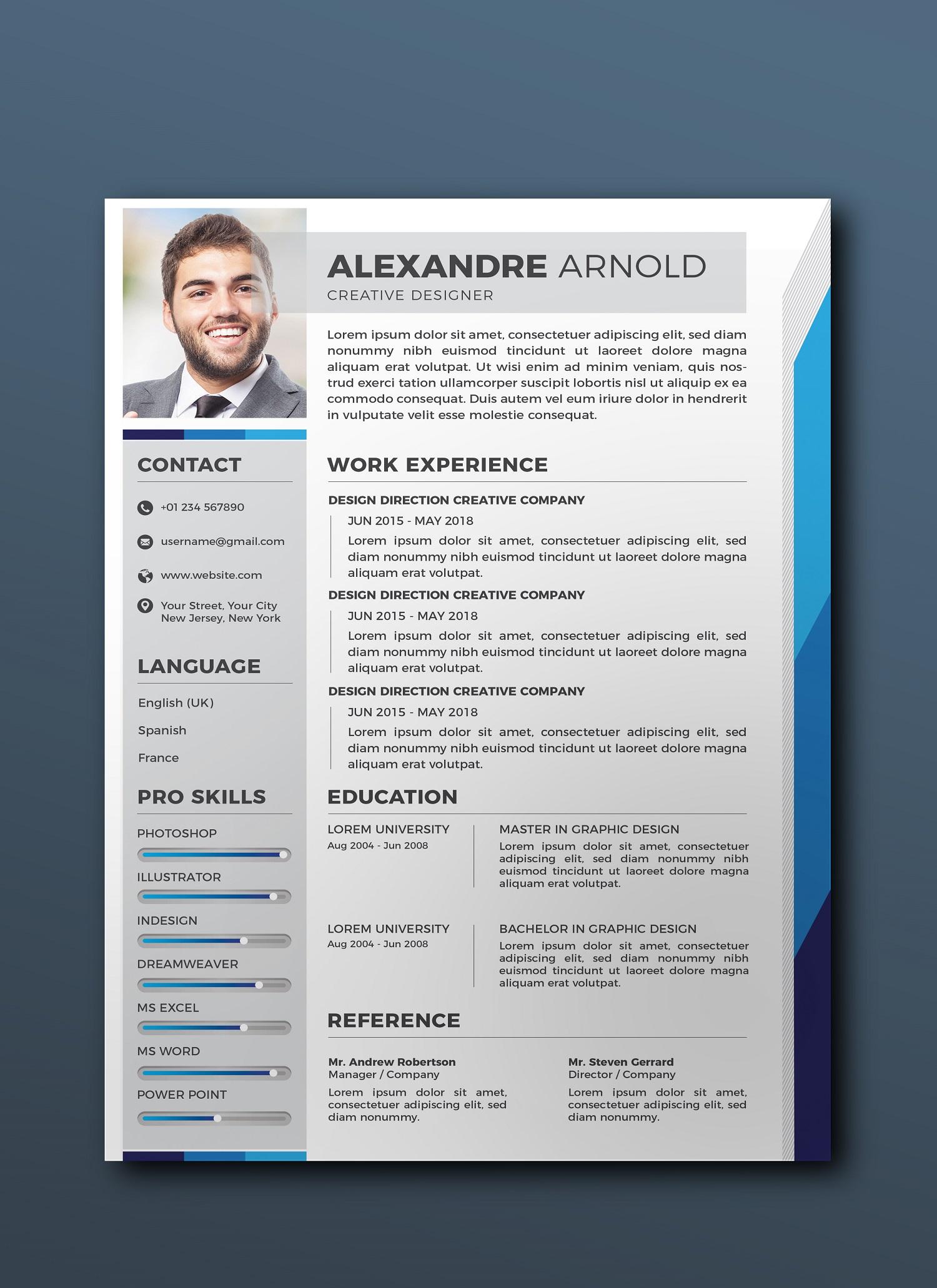 Resume PRO example image 3