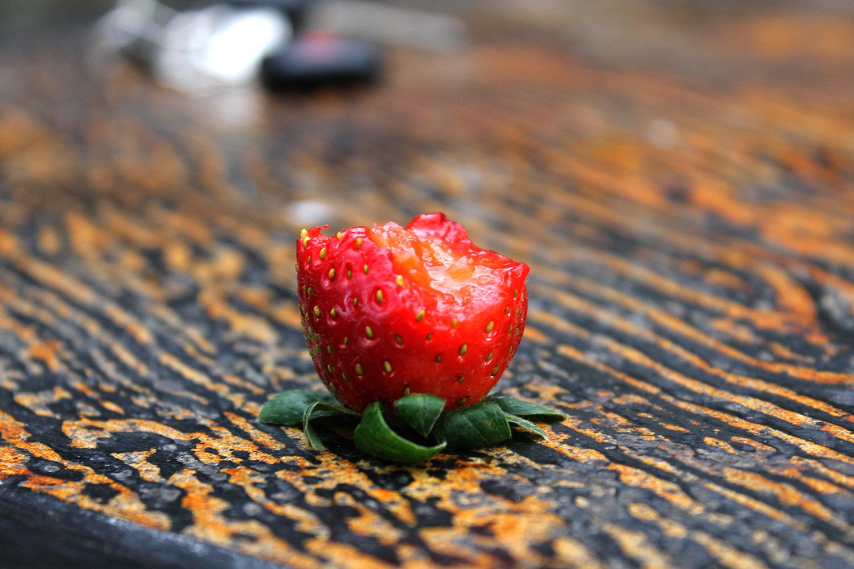 Strawberry example image 4