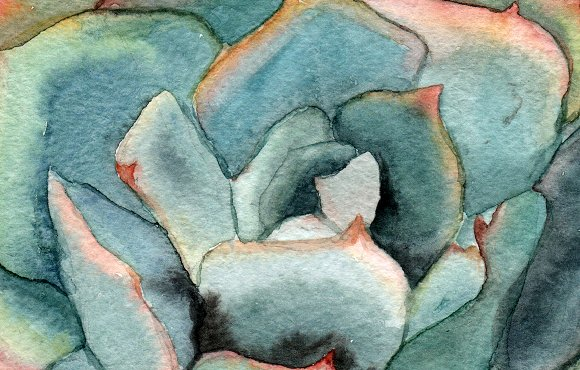 Watercolor Succulents Clip Art example image 4