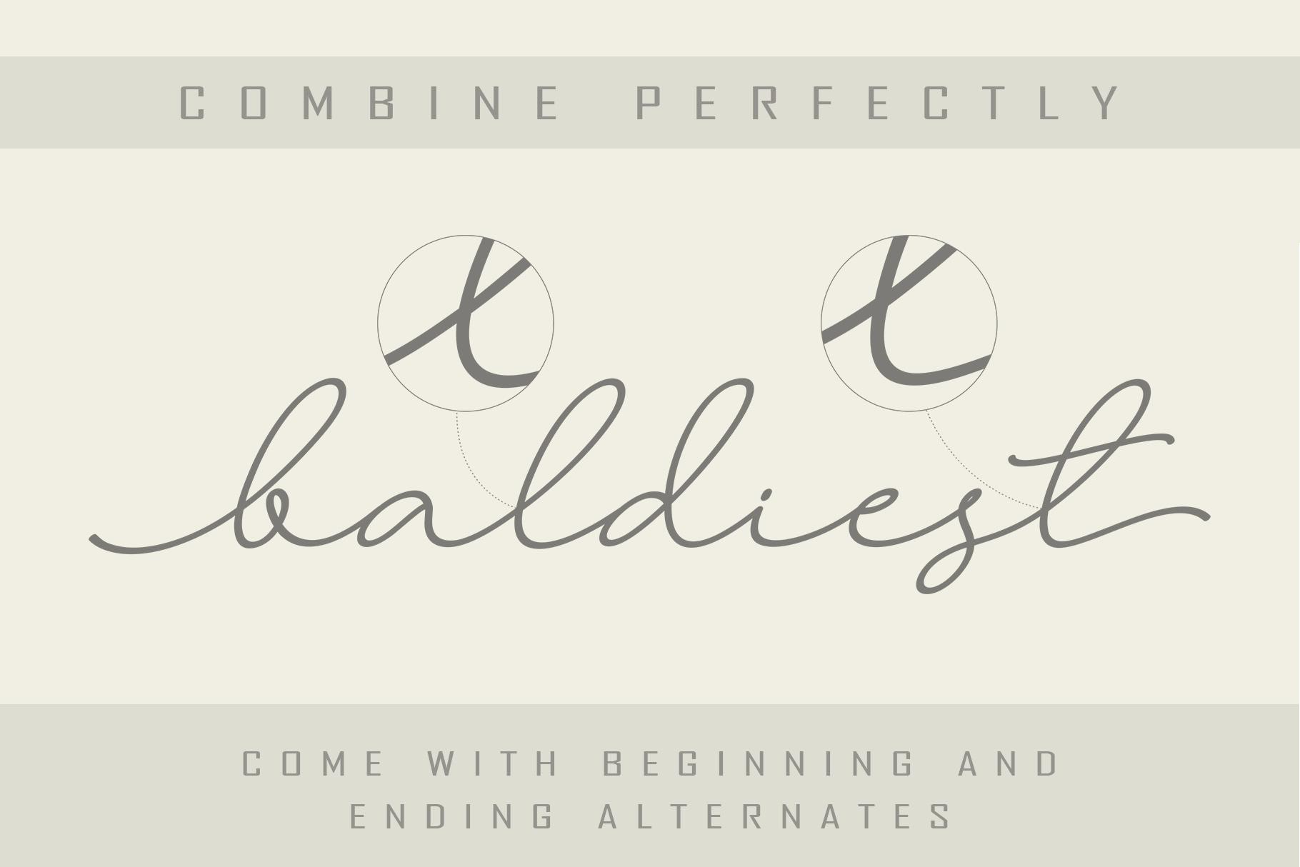 Larianti Monoline Handwritten Font example image 6