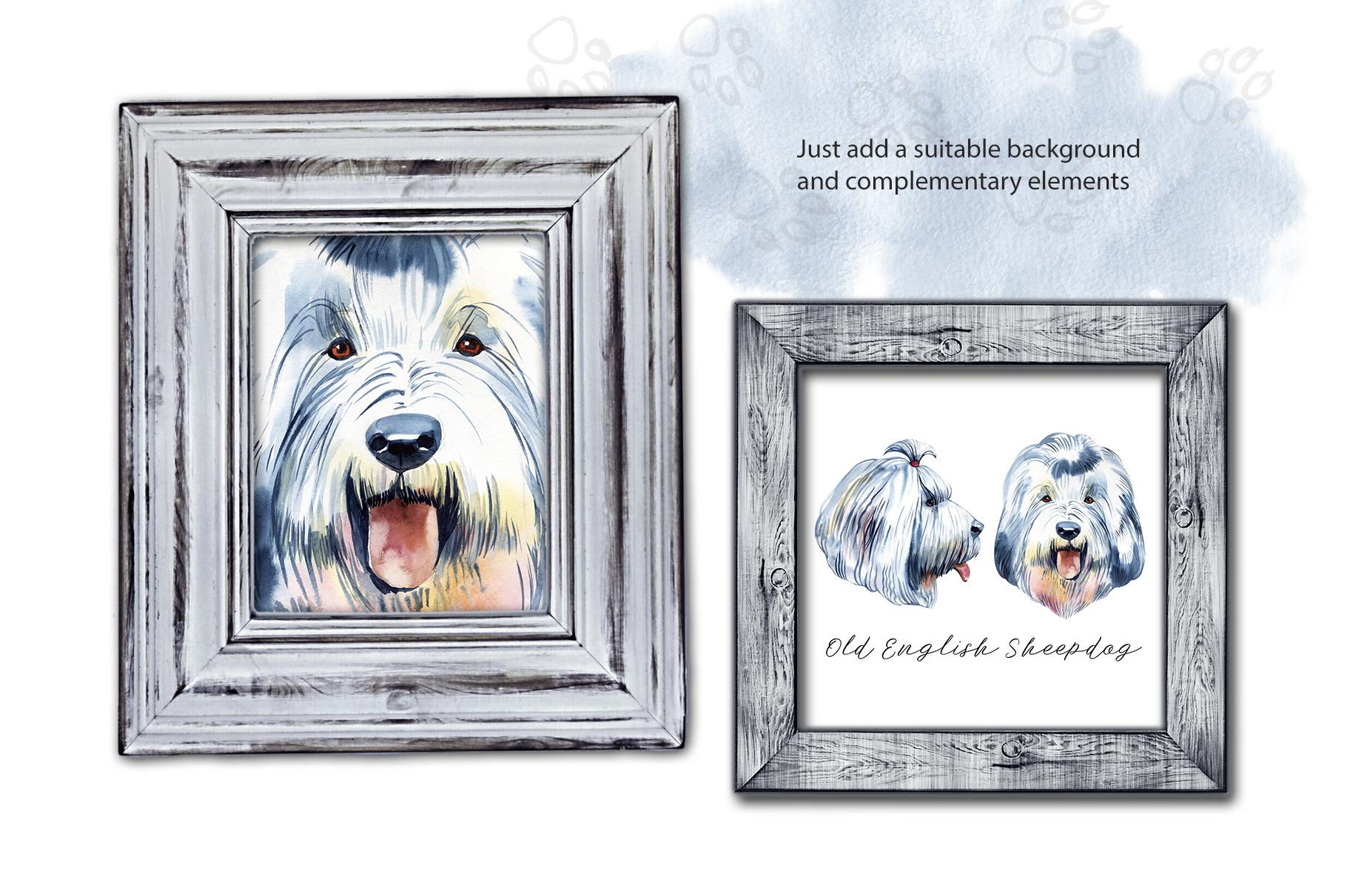 Watercolor dog. Old English Sheepdog example image 3