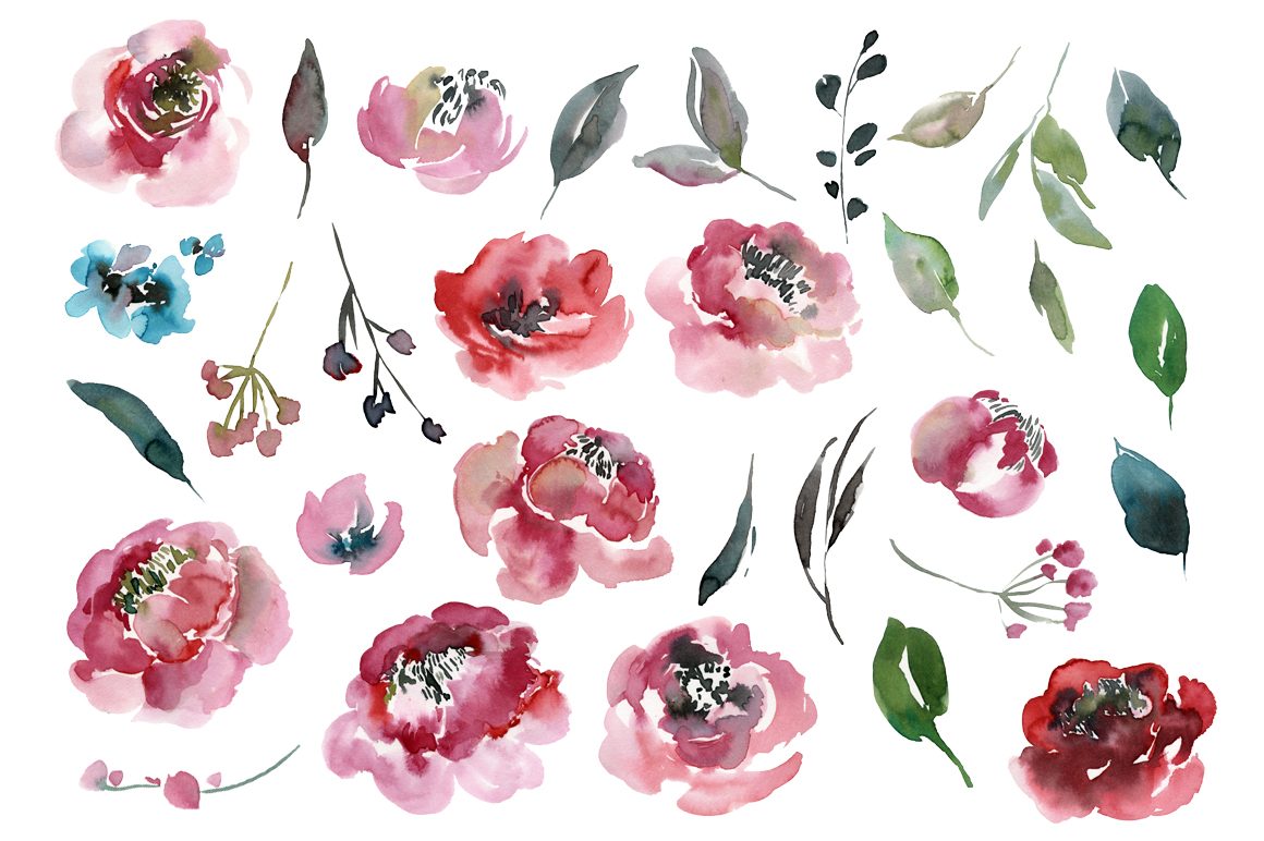 Watercolor peony, roses flowers PNG collection example image 2