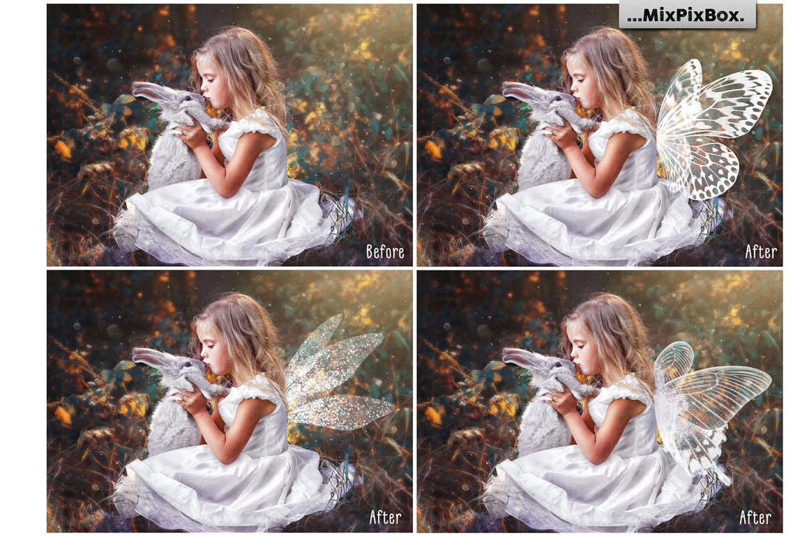 Fairy Wings Photo Overlays example image 2
