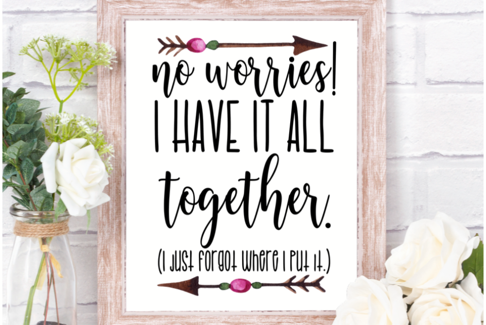 No worries I have it all together, funny printable wall art example image 1