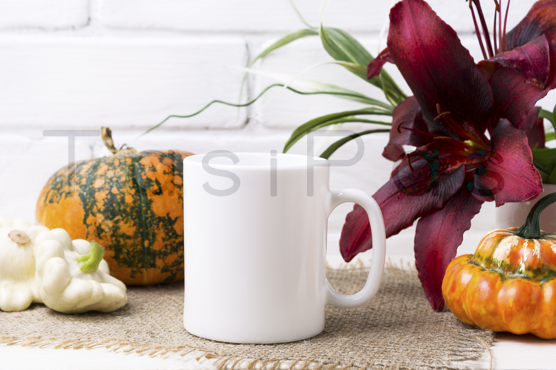 White coffee mug mockup with pumpkin example image 2