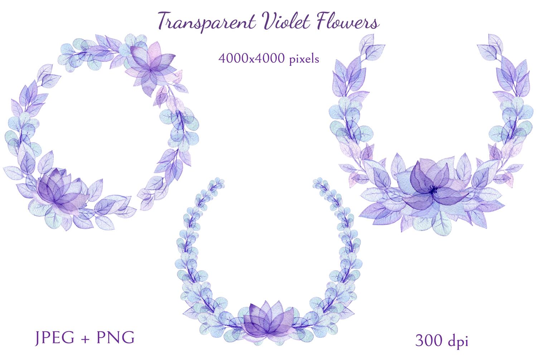 Transparent Violet Flowers example image 5