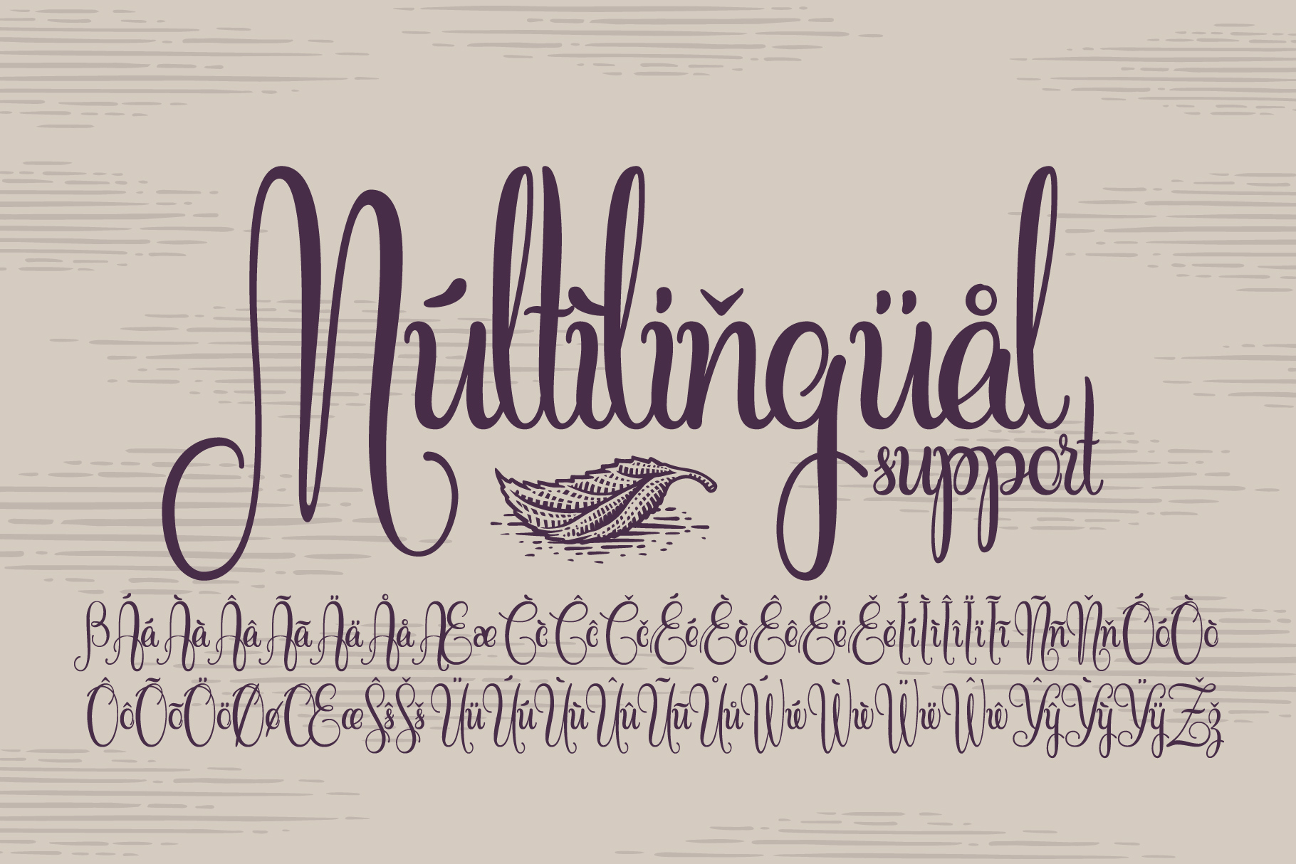 Cidrella script & graphics example image 6