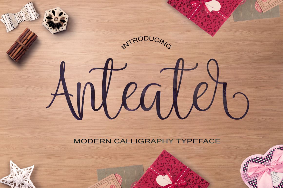 Calligraphy Font Bundles example image 11
