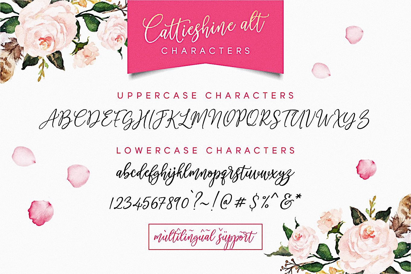 Cattieshine - Font Duo example image 10