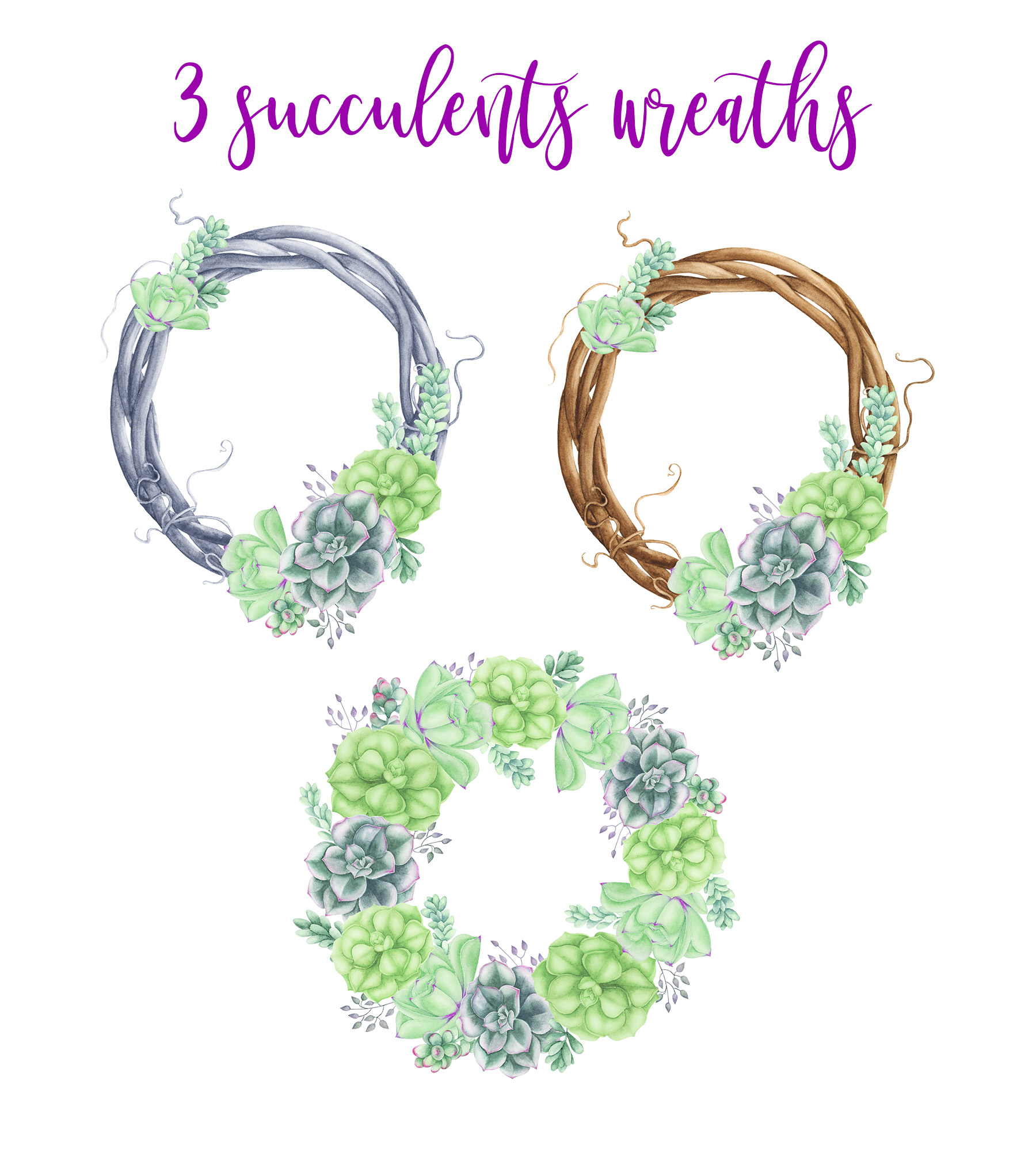 Succulents Frames and Wreaths example image 3