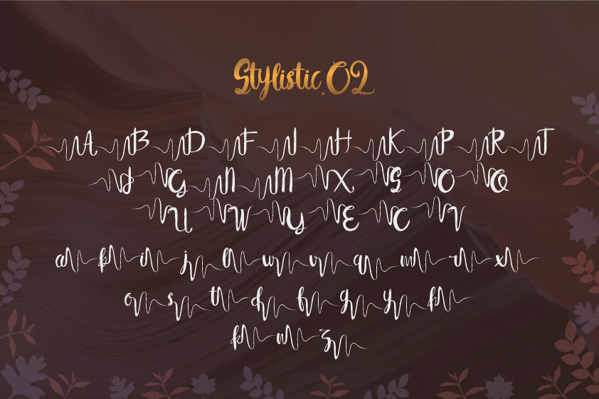 Syelma+Swashes example image 4