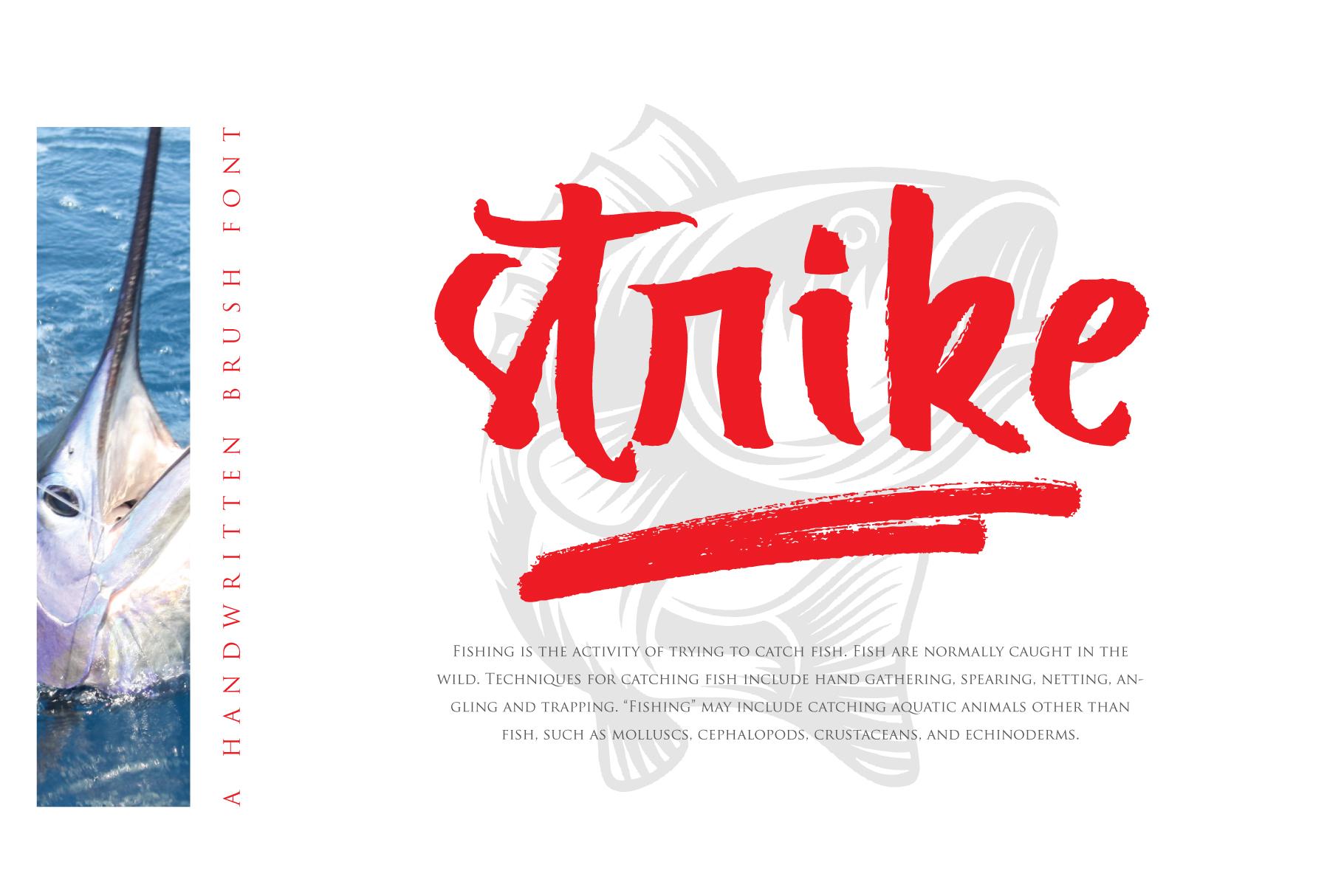 Break Types example image 4