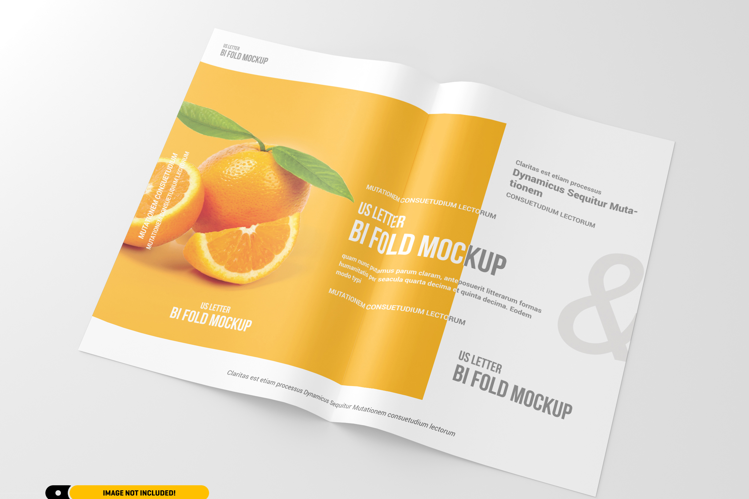 US Letter Bifold Brochure Mockup example image 7