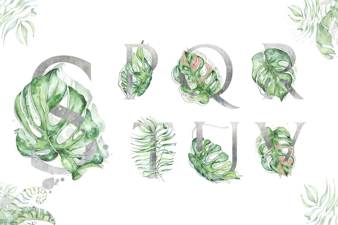 Silver Monstera - tropical alphabet example image 4