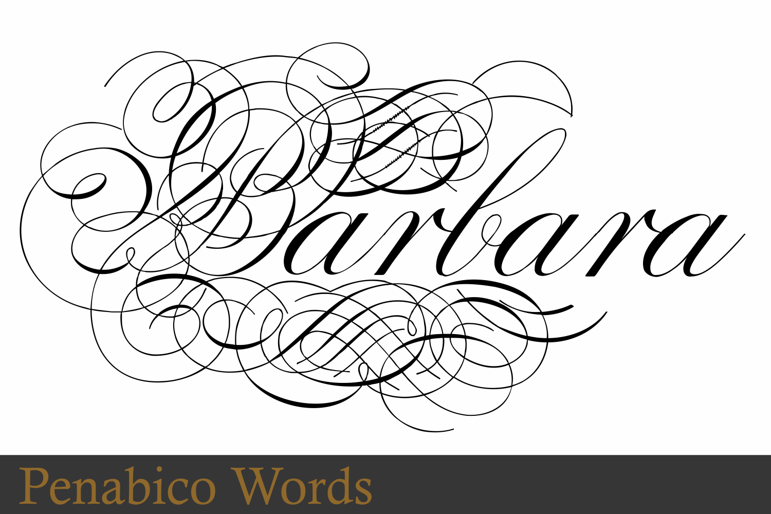 Penabico Words  example image 10