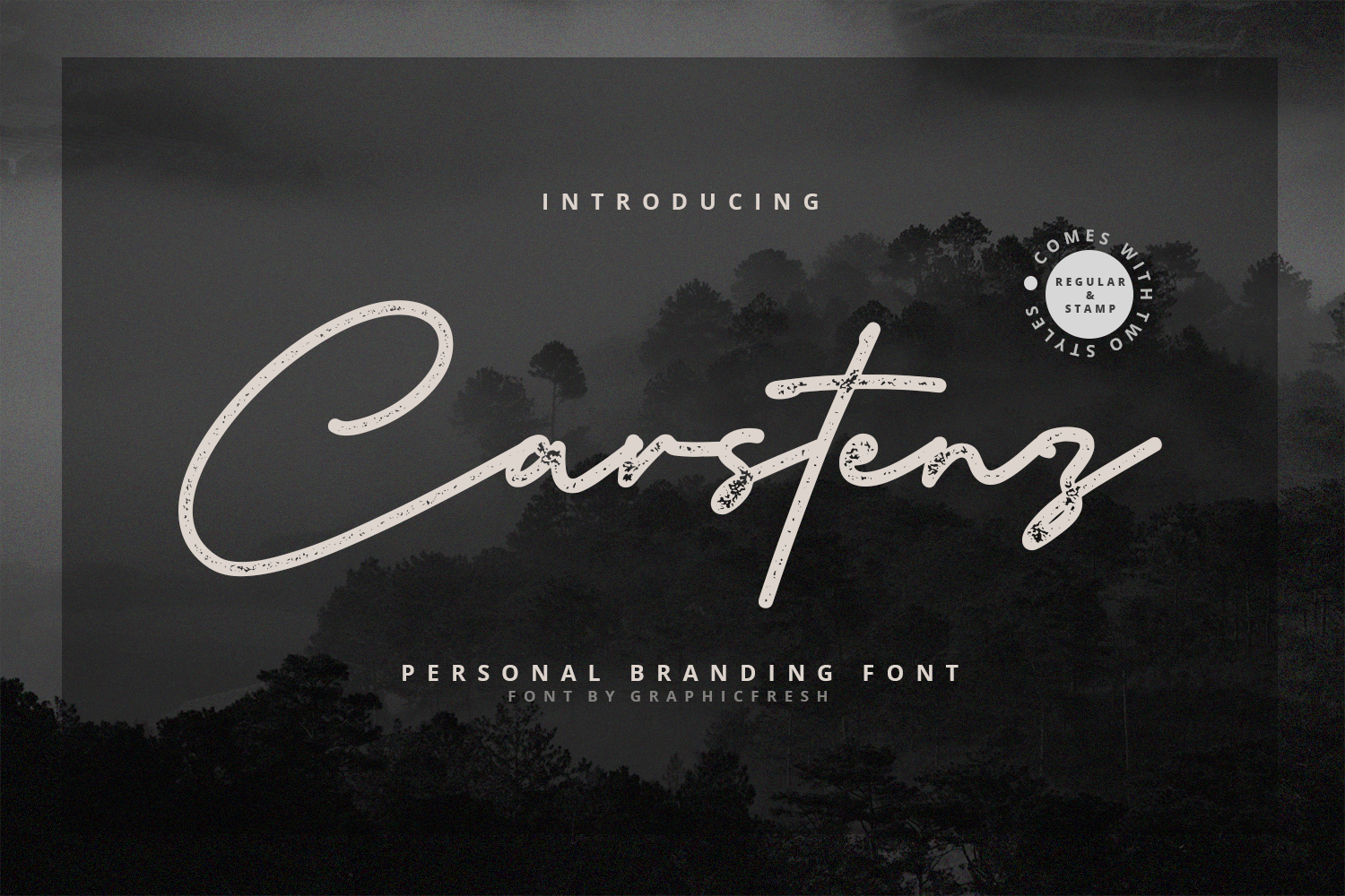 Carstenz Vintage Type example image 11