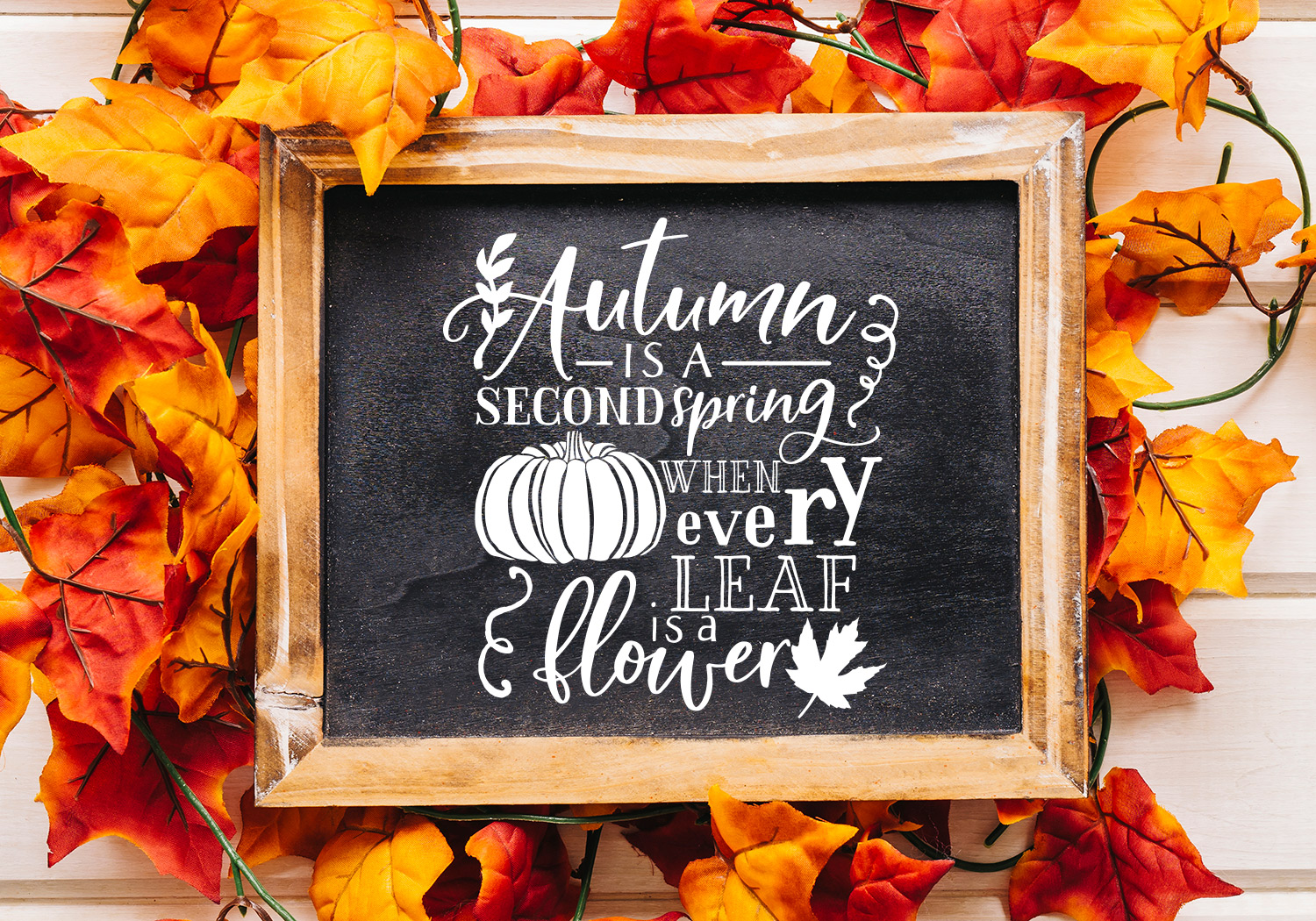 Pumpkin & Fall Quote SVG Cut File Bundle example image 9